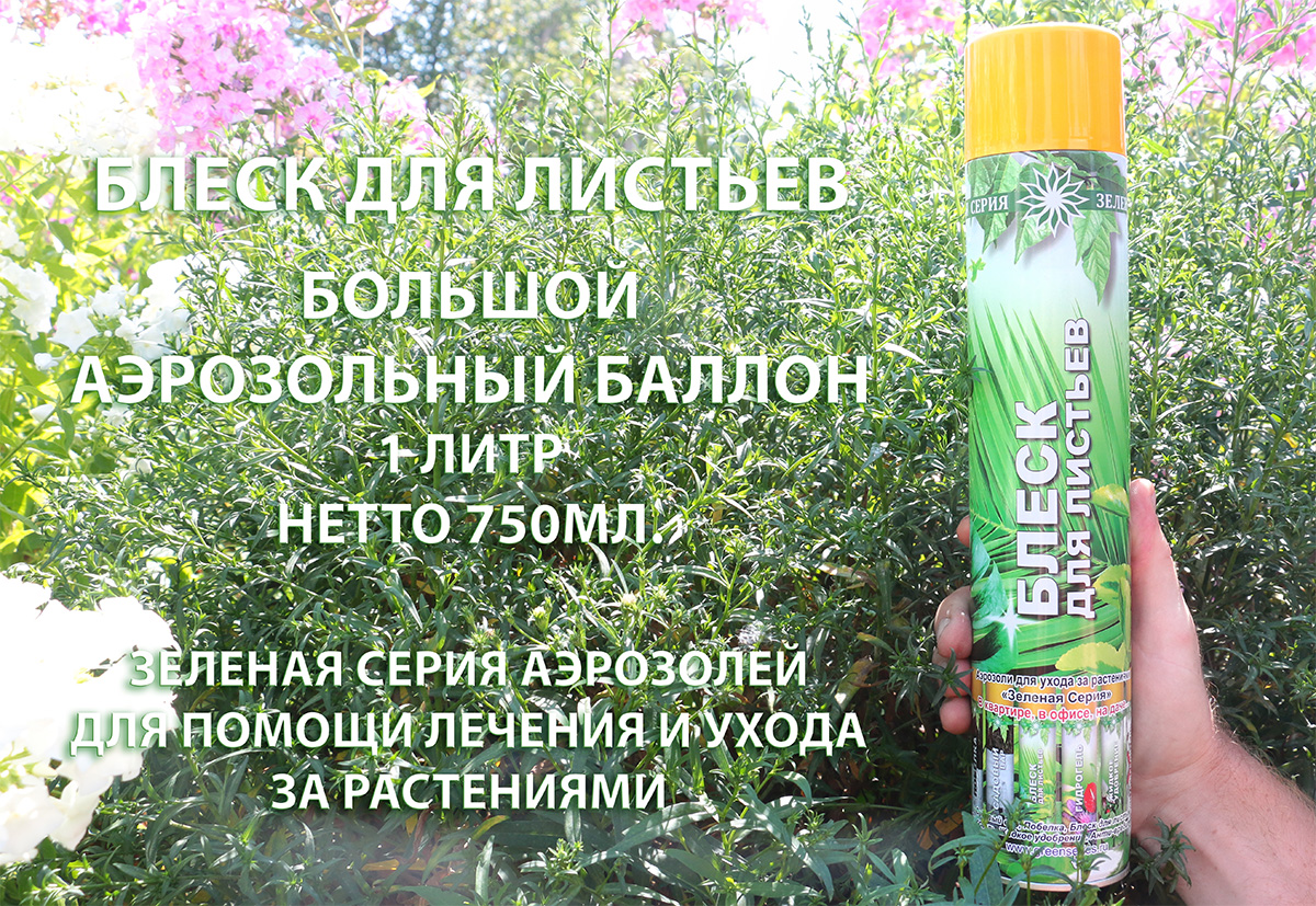 блеск для листьев 1 литр, блеск для листьев аэрозоль 750мл